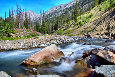 Western stream flows down from the Rocky Mountains of nothern Wyoming.