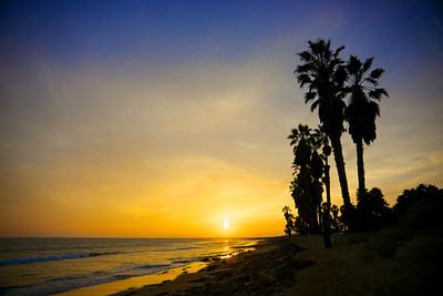 Sunset with Palms Trees