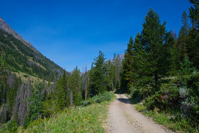 A gravel road winds into the hieghts of Wyoming's Rocky Mountains.