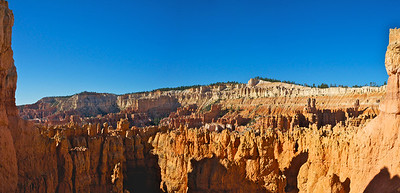 Tops of Hoodoos in Bryce Canyon