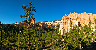Hoodoos in the Valley of the Pines