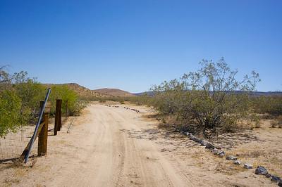 Road into the Desert Wilderness