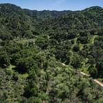 Dirt Path into Green Hills