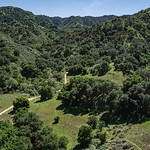 Trail in California Woodlands